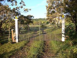 Lion Gates