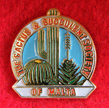 Society lapel pin aprox. 1.5cm