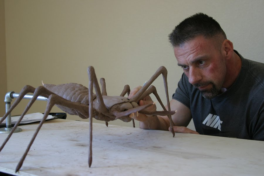 ... First Look ... Giant Camel Spider Size