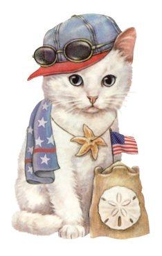 Gatos patrióticos dos EUA