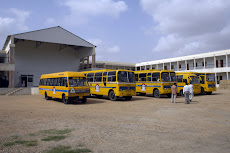 The bus fleet, August 2008