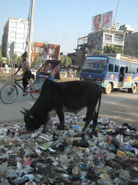 ネパールの問題