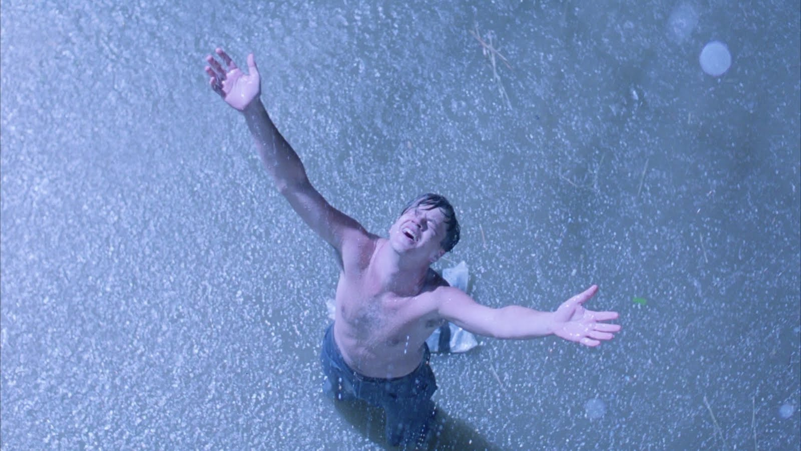 hope in the shawshank redemption The shawshank redemption is a 1994 film about a banker named andy dufresne, who is accused of double murder in the 1940s and begins a life sentence at the fictional shawshank prison, where.