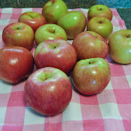 Grampy's Birthday Apple Crisp