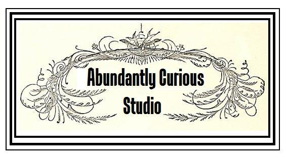 Abundantly Curious Studio