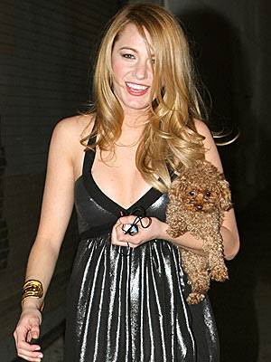 Blake Lively Maltipoo on Blake Lively Egotastic   Blake Lively Pics   Blake Lively Photos Jan