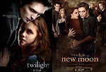 Twilight vs New Moon