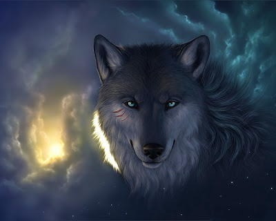 Black wolf Starring photo