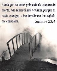 Sl 23:4