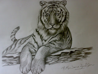 Ferrocious Feline  - Tiger Claw - Lion - Animal Drawing forest jungle mountain pencil sketching moon trees leaves eyes lion cheetah animal jungle llife speed crouching roaring angry look animals