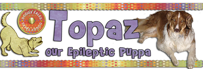Topaz - Our Epileptic Puppa