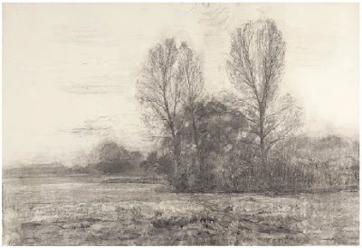 Field with trees 1906, Gemeentemuseum Den Haag by Piet Mondrian
