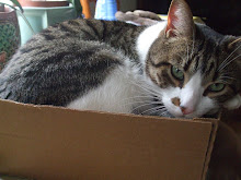 Every body should have a Charlie in a box!