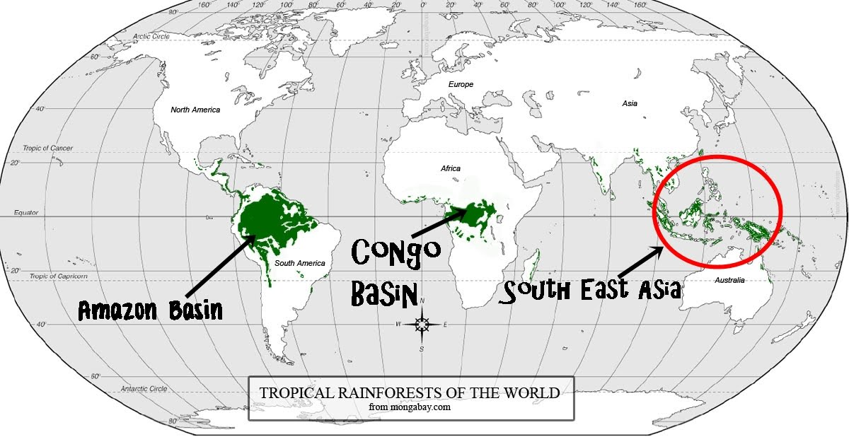 asian rainforest map