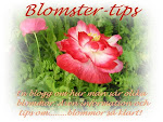 "Min andra blogg ""Blomster-tips"""