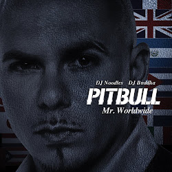 Pitbull Mr.Worldwide The Mixtape