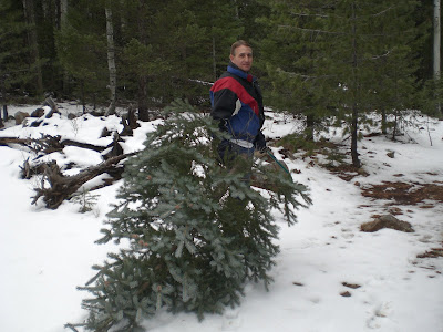 Cutting the Christmas Tree 2008