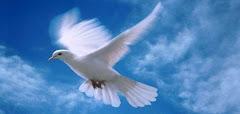 Ας ανοίξουμε τα φτερά στο δικαίωμα της ελευθερίας της έκφρασης του λόγου!!