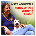 Puppy and Dog Training Online