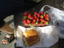 Collioure, breakfast at the harbor