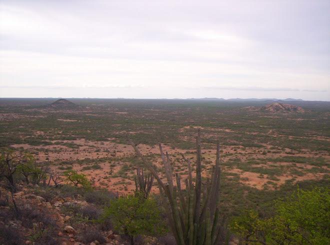 Territorio wayuu IPAPURE
