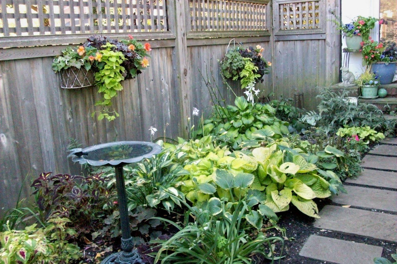 A Garden In Bethlehem Pa October 2010