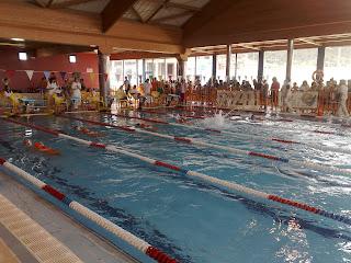 Club nataci n bajo arag n competici n fass en monz n for Piscinas de monzon