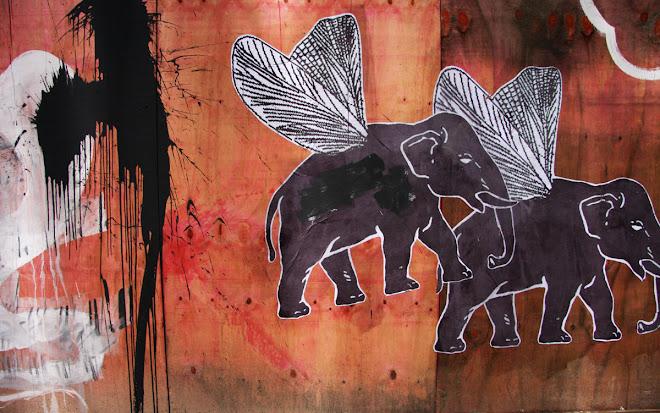 elephante attack