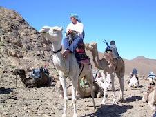 In de  Sahara in de omgeving van Tamanrasset