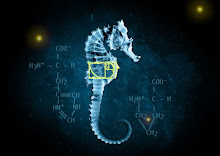 Fringe Imagine The Impossibilities Find The Pattern Seahorse Glyph