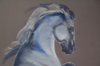 rearing grey arabian horse in pastel