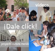 CREACIÓN DE VIDEOS 2009