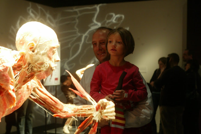 BODIES: el cuerpo humano en vivo