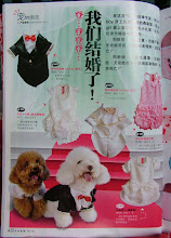 "Gal Frenz Pet Boutique @  "" pets 宠物情缘第 34 期"