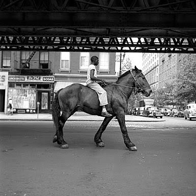 urban horseman
