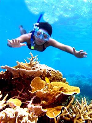 Pulau Redang, Tahun Melawat Malaysia 2014, Batu karang