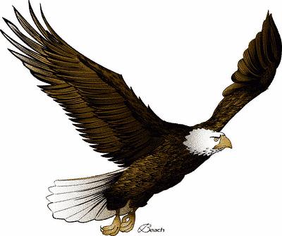 Desenhos Legais: Desenhos De Águia: superdesenhoslegais.blogspot.com/2009/07/desenhos-de-aguia.html