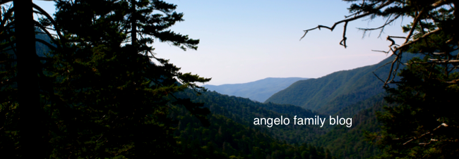 angelo family blog