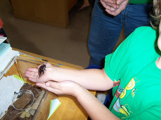 Viktoria holding a hissing cockroach