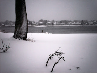 Photo by SnaggleTooth Jan 12 2011