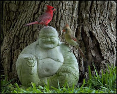 Buddha and Birds
