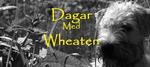 Dagar med Wheaten och Hilda
