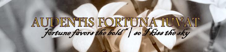 Audentis fortuna iuvat...