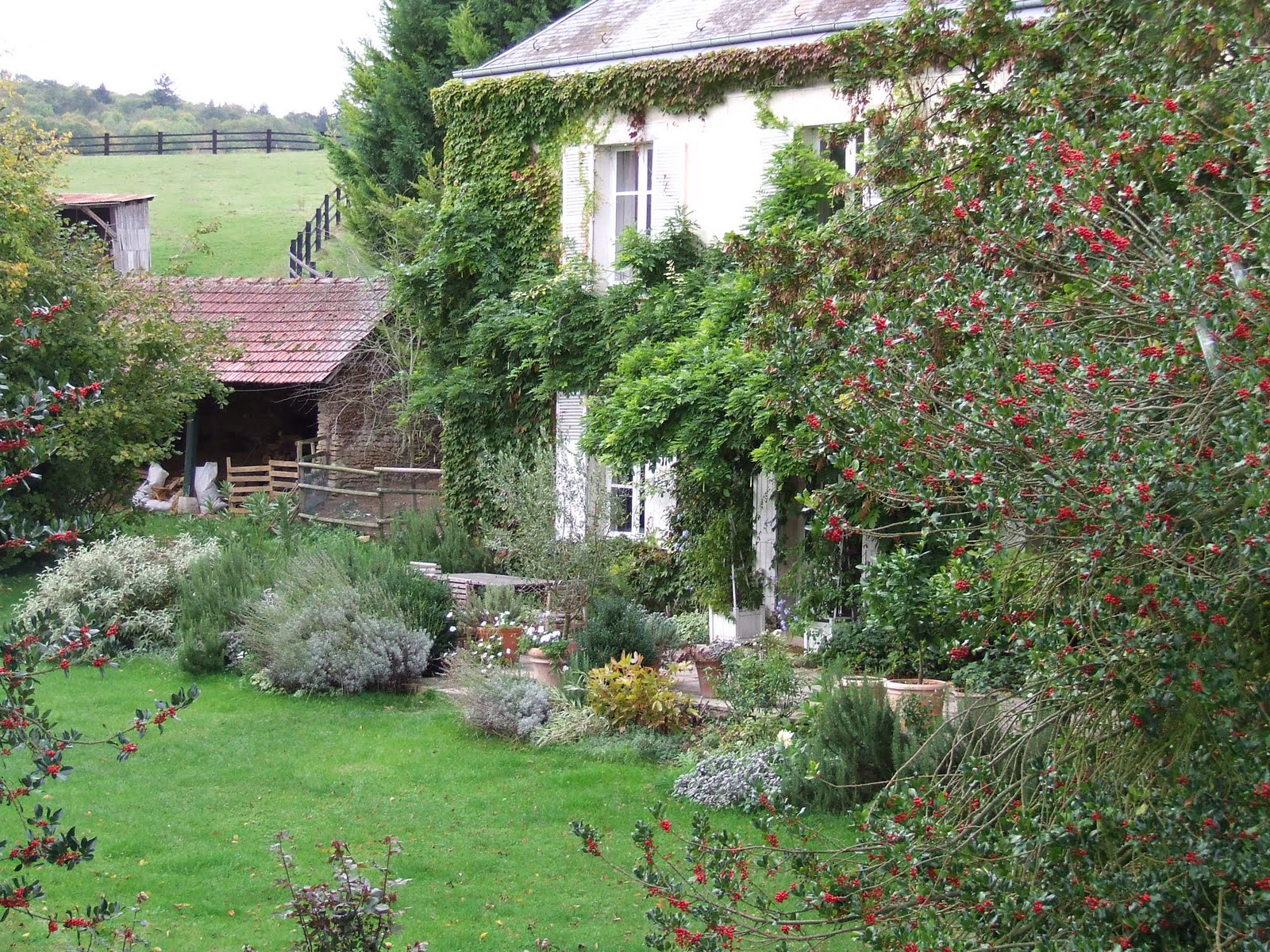 Our french country guest cottage for French country home