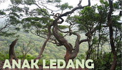 Blog ANAK LEDANG