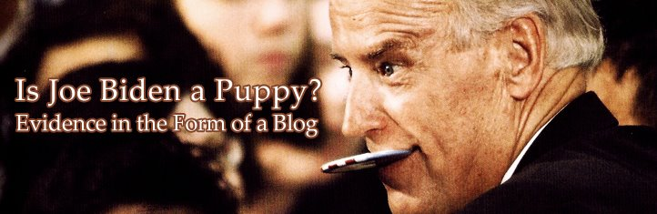 Is Joe Biden A Puppy?