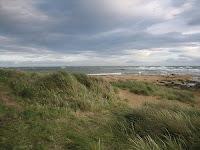 Strand mit Gras, windgepeitschten Wellen und metallisch-blauem Himmel