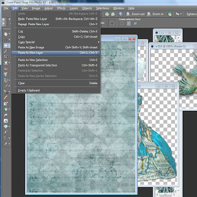 How to use paint shop pro