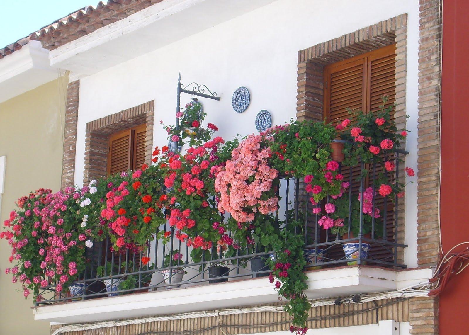 Puente genil es mi blog balcones pontanenses con encanto - Balcones con encanto ...