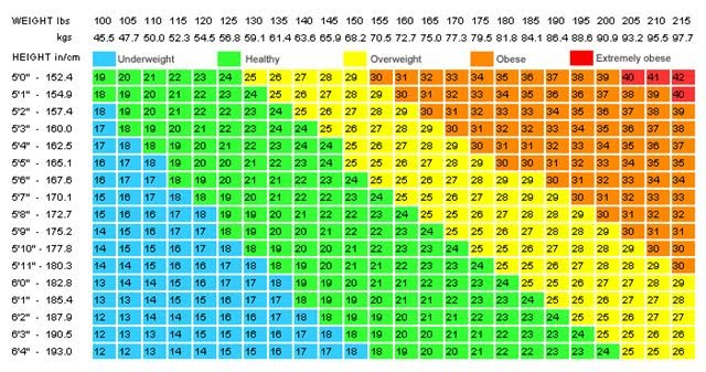 Embracing the Journey: BMI-Body Mass Index